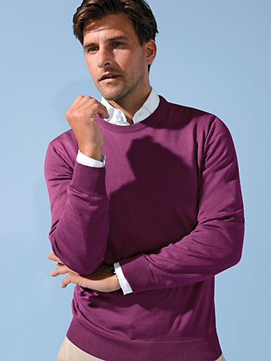 Peter Hahn - Rundhals-Pullover – Modell CLEMENT